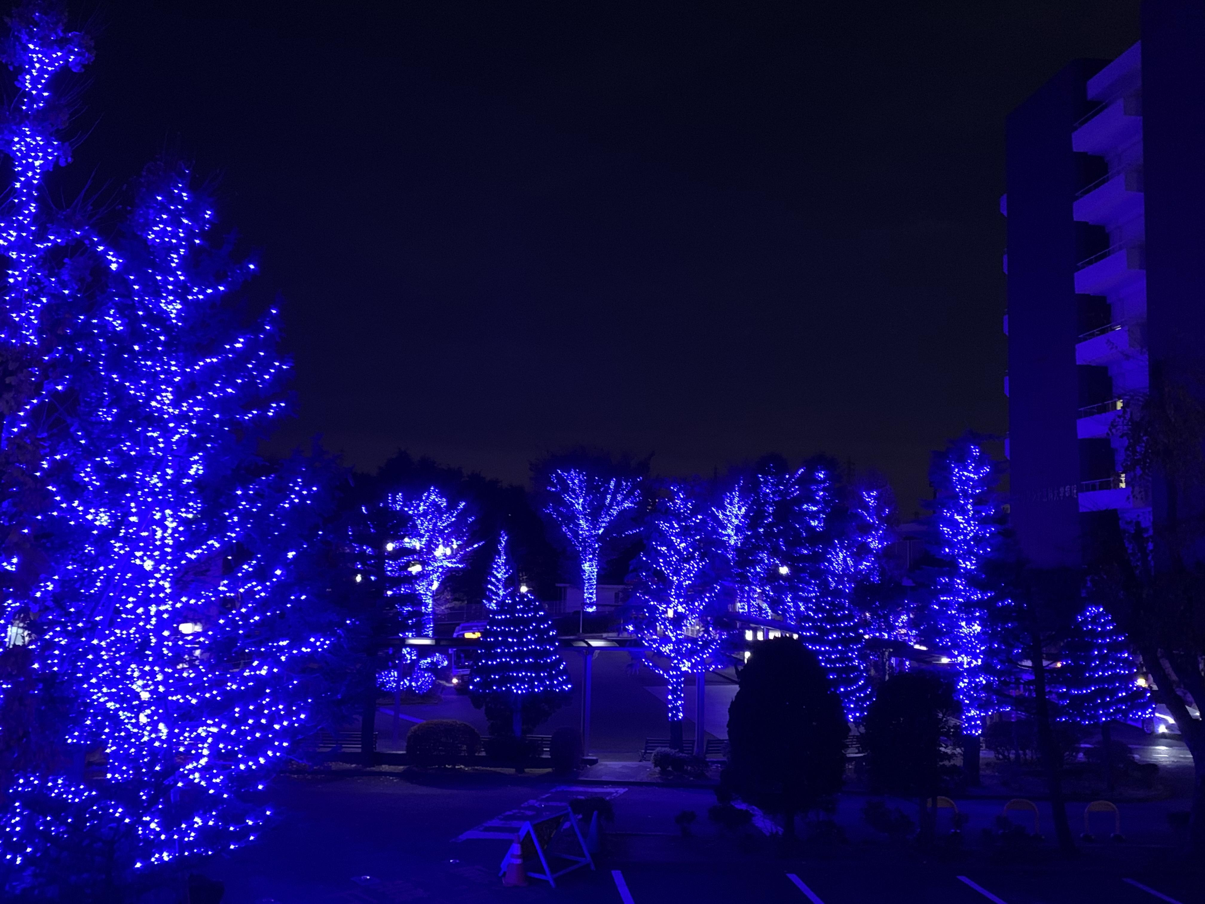 クリスマスイルミネーション2020